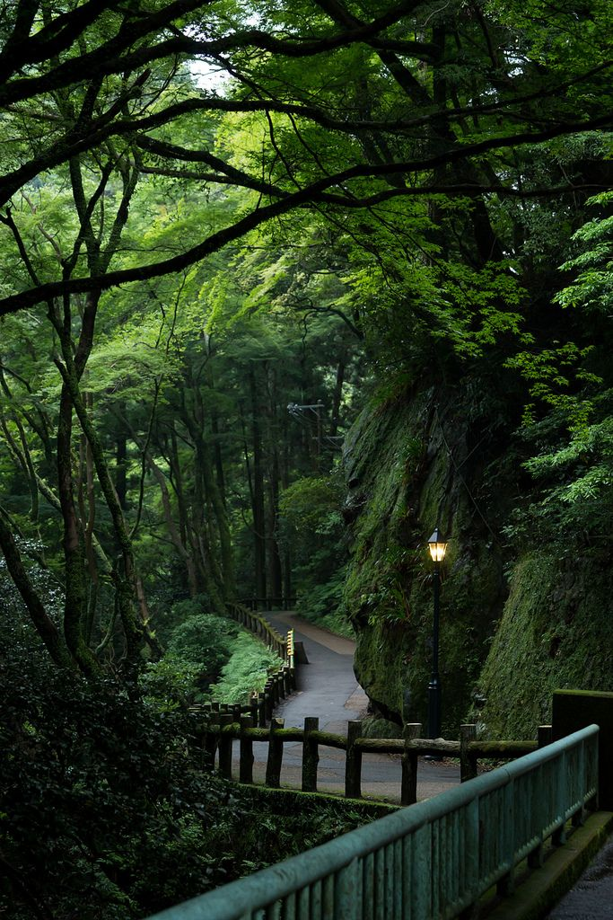 """Minoo Park, Osaka, Japan | by Sergio A. S."""
