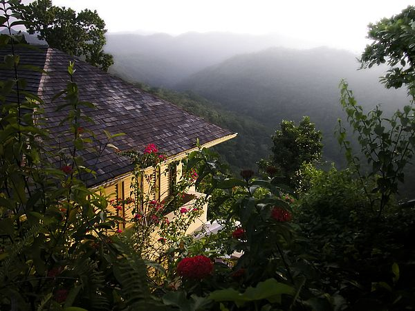 Waking up to watch the mist walk the mountains from a beautiful hillside villa in the suburban parish of Saint James on the north-west end of the island of Jamaica.