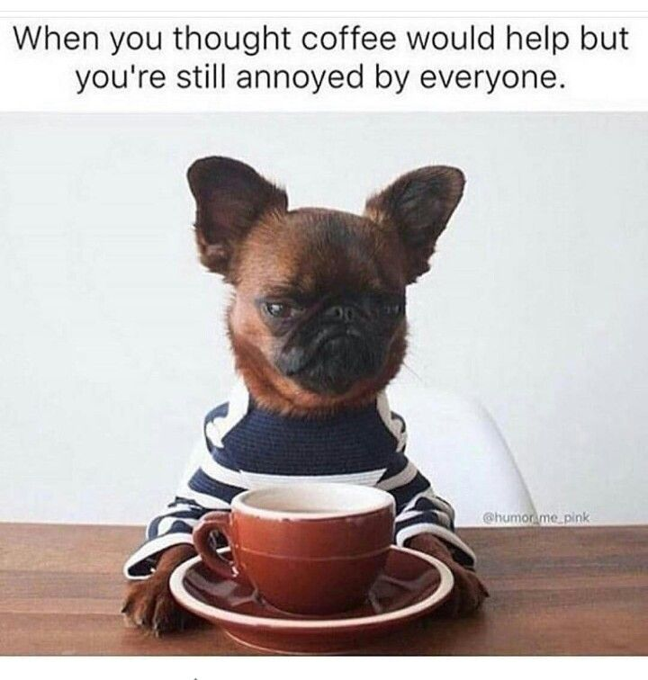 When you thought coffee would help but you're still annoyed by everyone.