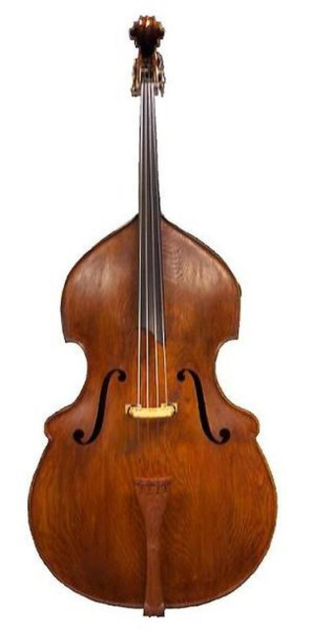 Top 10 Music Instruments for Beginners: Double Bass