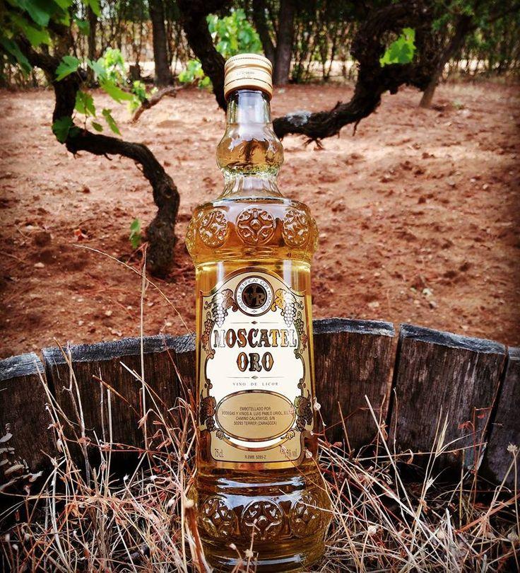 Moscatel ORO Vino de Licor de Casa Valdepablo (75cl) Bebida de finísimo paladar y delicado bouquet. Indicado a cualquier hora, como aperitivo, postre y sobremesa.  Elaborado con el mayor esmero por BODEGAS VALDEPABLO a partir de Uva Moscatel de Alejandría.
