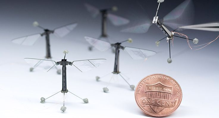 Qué son las abejas robóticas polinizadoras?