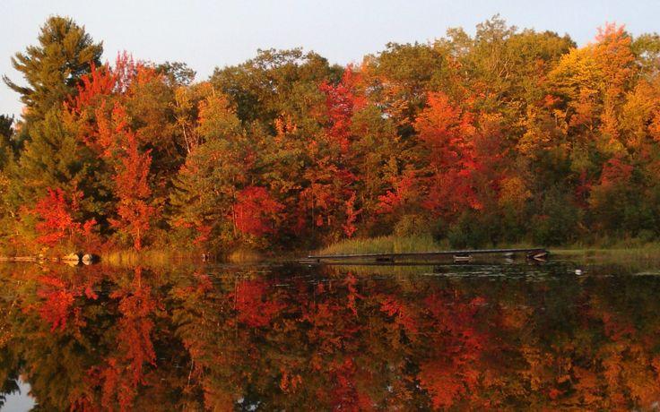 Kasshabog Lake, Ontario Photography by Anna Haladay