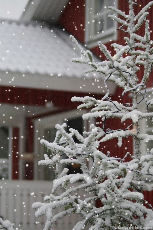 red house white snow