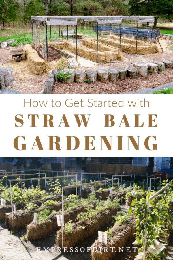 87556d6b20fe3ead7305cd51529c5fa4 - Straw Bale Vs Hay Bale Gardening