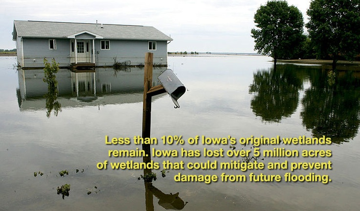 Online campaign from Iowa's Water & Land Legacy: Estate Business, Dirty Word, Japan Tomorrow, Iowa S Water, Change Report, Groundswell Pipeline, Climate Change, Land Legacy