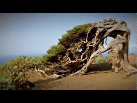 We've shot an El Hierro advertisment video. It shows the most beautiful things of the island. And now we're trying to spread it as much as possible.  HELP US and REPIN this!