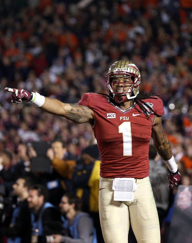 the 96 best florida state football images on pinterest florida