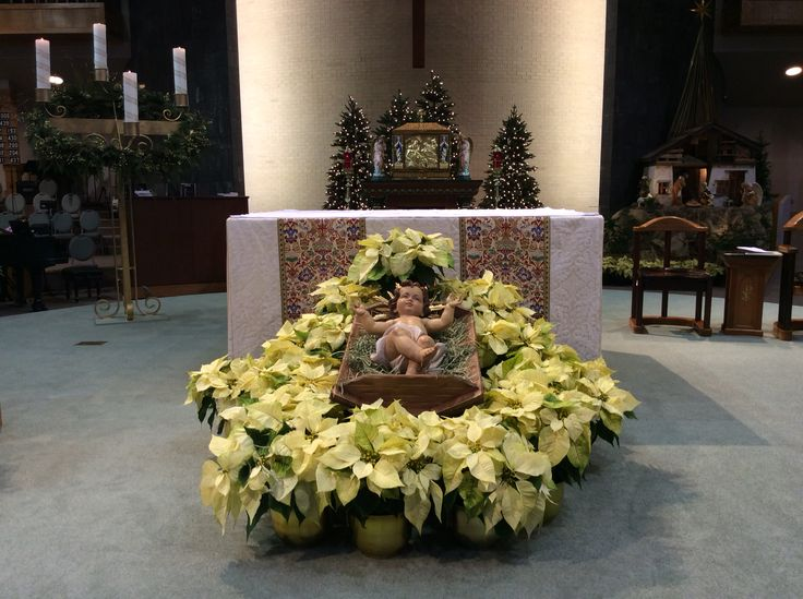 Altar decorated with baby Jesus and poinsettias for Christmas.  Epiphany of the Lord Catholic Church. Katy, Tx.