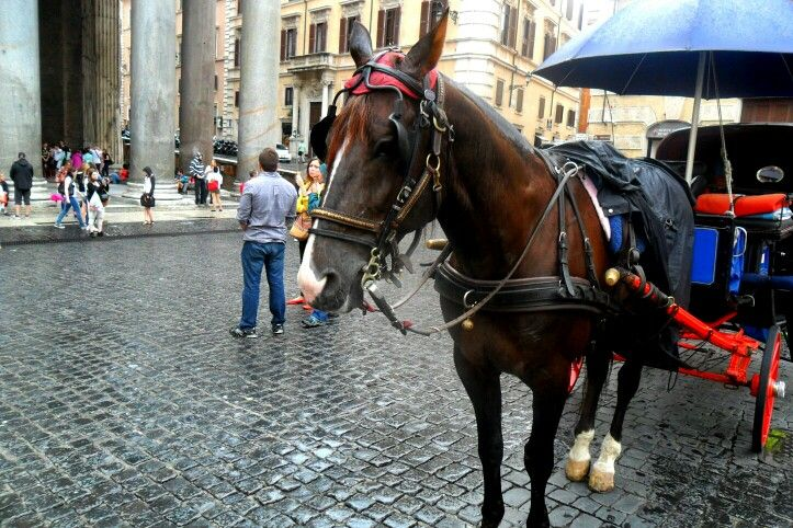 Pantheon with horse