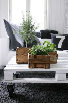 """My Attic: Indoor Gardening I like the planter boxes.  Could try making with diy """"aged"""" (vinegared/stained) wood."""
