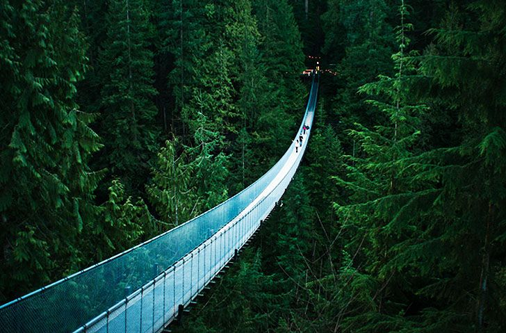 The very beautiful and very terrifying Capilano Suspension Bridge in North Vancouver, BC.