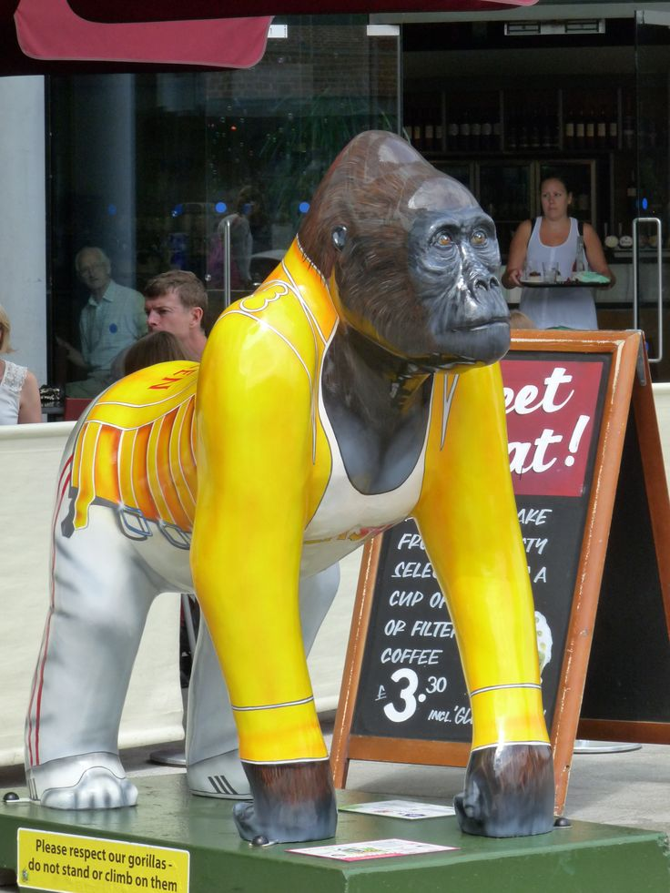Gorilla in Norwich  gogogorillas.co.uk/