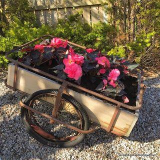Tove Kristins Hage: Den gamle sykkeltralla