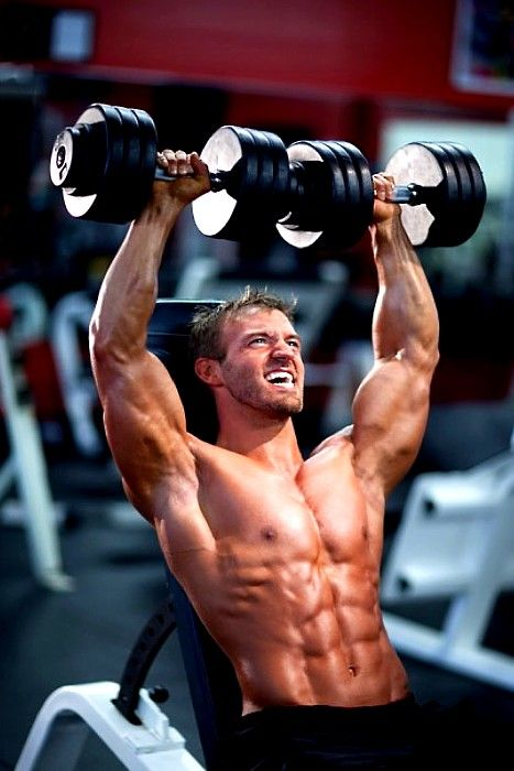 Interesting Bodybuilding Pin re-pinned by Prime Cuts Bodybuilding DVDs: The World's Largest Selection of Bodybuilding on DVD. | Gymspiration | Pinterest | Fitn…