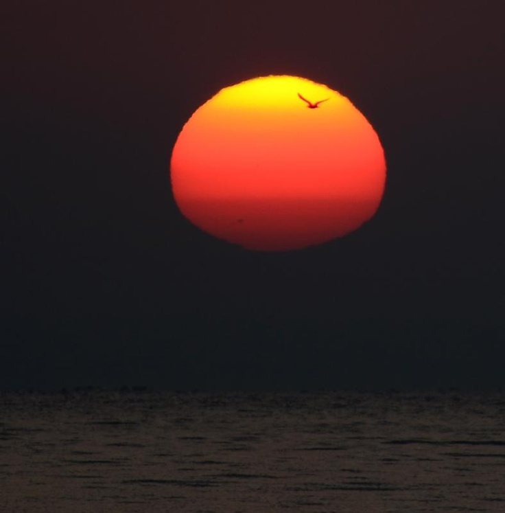 Sunrise over Lake Balaton, Balatonfured, Hungary. Series of photos taken by Monika Landy-Gyebnar. Sunspot group 1302 is clearly visible in the lower part of the sun. Click through for the rest of the series.