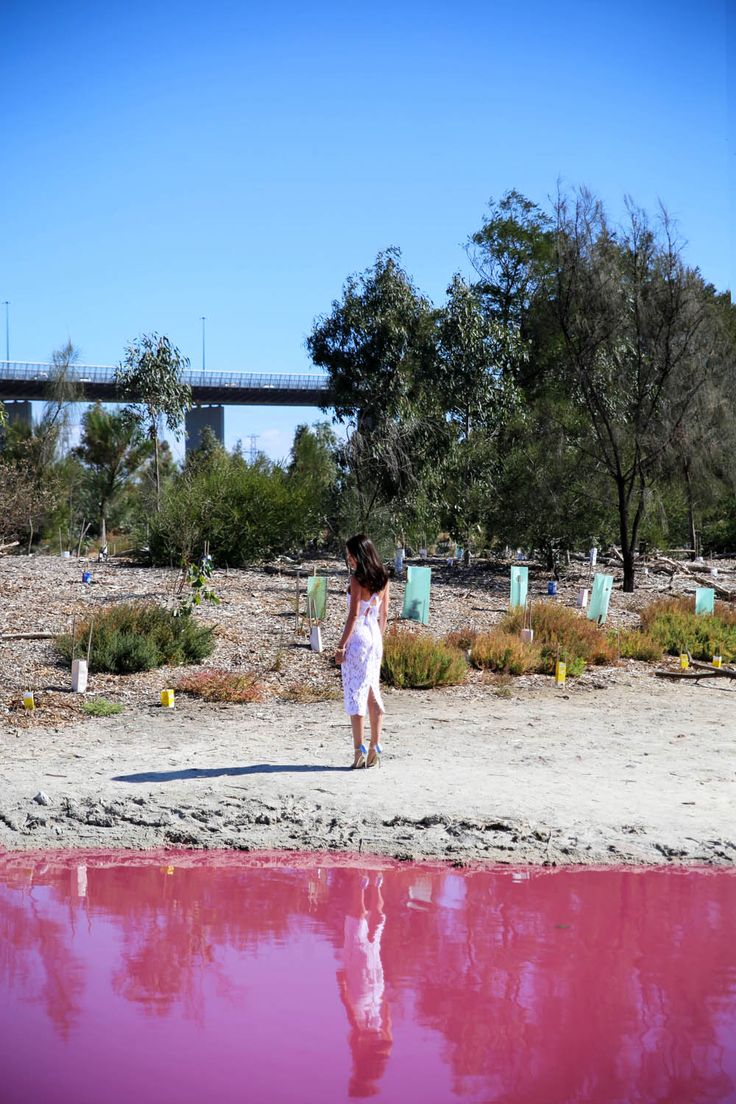 Pink Lake Melbourne   The Tia Fox