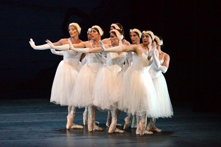 Les Ballets Trockadero de Monte Carlo, Il lago dei cigni, foto di Sascha Vaughan