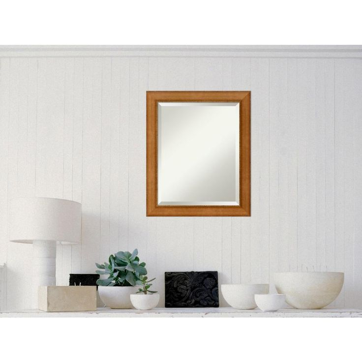 Egyptian Bronze Wood 20 in. W x 24 in. H Contemporary Framed Mirror