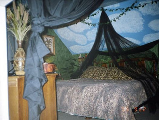 107 Best Images About Safari Adult Bedroom On Pinterest Safari Theme Bedroom Jungles And