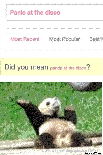 NO. I DIDN'T. WHO THE HECK LOOKS UP PANDA AT THE DISCO? Haha! Hilarious gif though