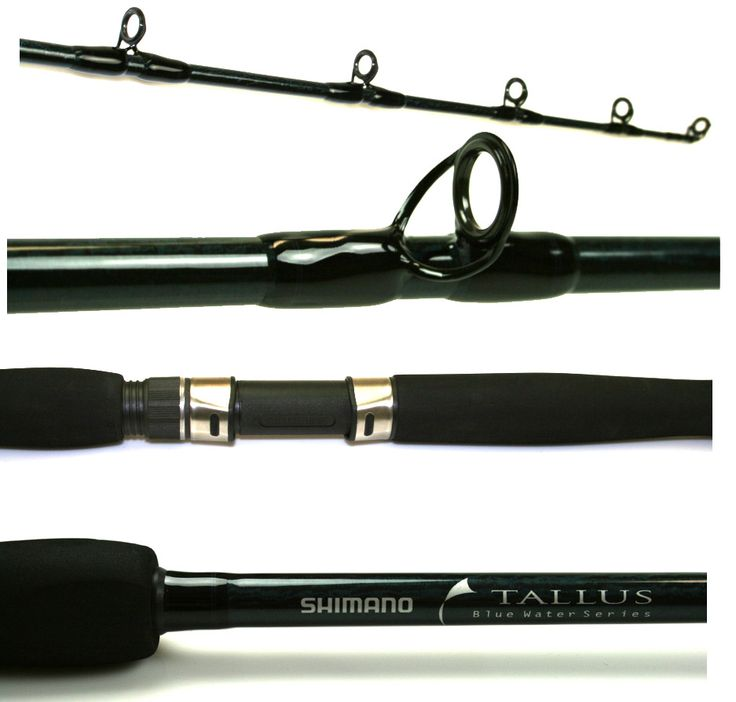 Shimano TLC66XXHBBL Tallus Blue Water Conventional Rod