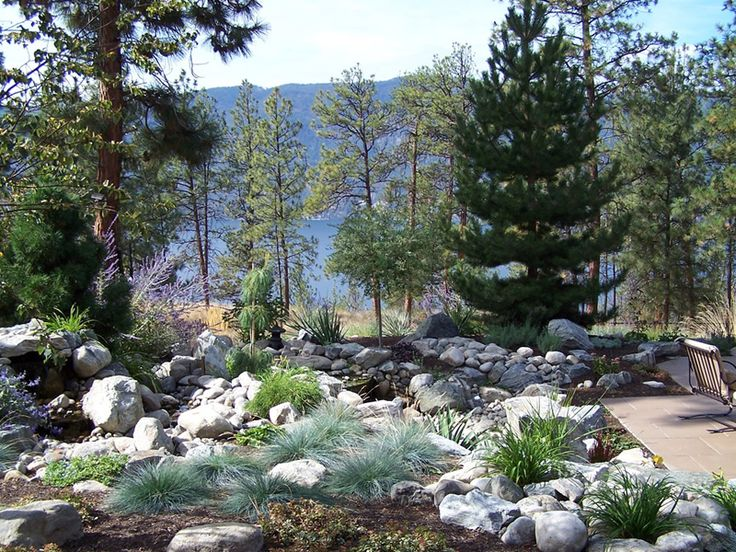 17 best images about dry river beds on pinterest gardens for Dry landscape design