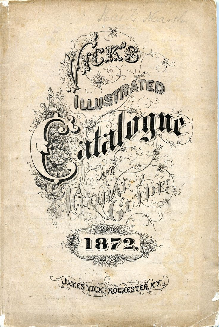 19th century hand lettered book covers - Google Search