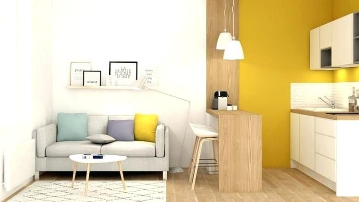 Imagini Pentru Amenagement Petit Studio 15m2 Deco Maison