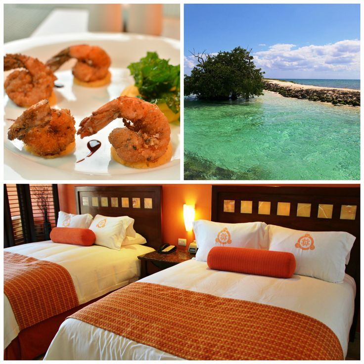 Eat, Swim, Sleep, Repeat. #vacation Comer, Nadar, Dormir, Repetir. #vacaciones