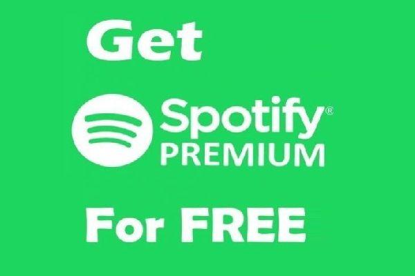 20x Spotify Premium Accounts Spotify Accounting