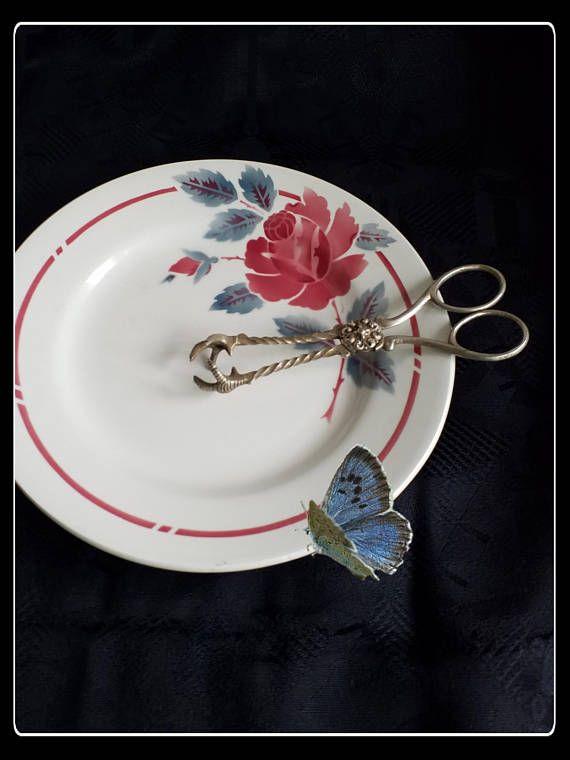 Vintage silver Victorian claw  sugar tongs