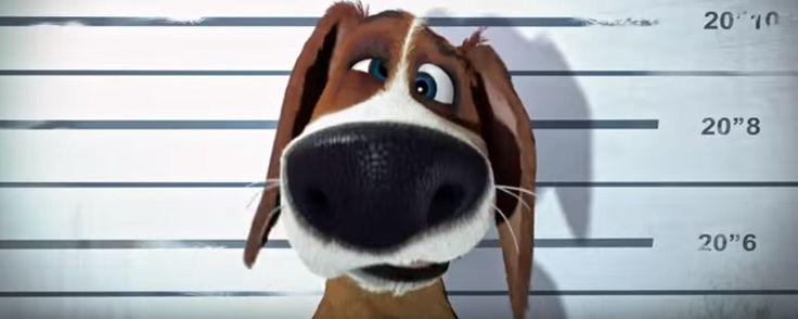 Noticias de cine y series: Ozzy: Primer tráiler de la película de animación ambientada en una cárcel para perros