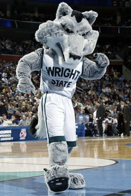 19 Best College Mascots Colonial Athletic Caa Images On