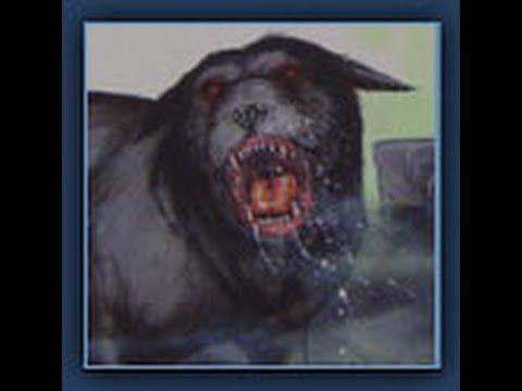 Part 1 Phantom Black Dogs - Animal X Classic | Storyteller Media