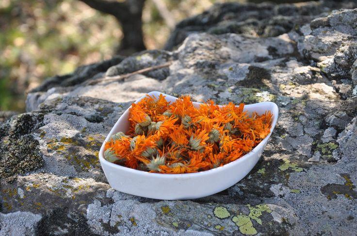Ringelblume Blüten 30 g getrocknet Calendula officinalis dried flowers in Beauty & Gesundheit, Vitamine & Nahrungsergänzung, Kräuter & Pflanzen | eBay