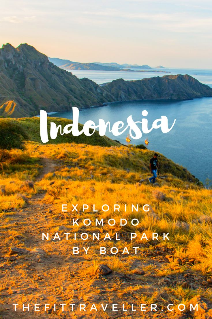 Exploring Komodo National Park by Boat | Komodo Tours Indonesia. Like most Komodo tours around Indonesia's Komodo National Park ours included everything from hiking to snorkelling and a visit with the Komodo Dragons. ********** Komodo Tours | Liveaboard Komodo | Liveaboard Indonesia | Diving Komodo | Komodo Island | Komodo Dragons | Padar Island | What to do in Komodo | Things to do in Komodo | Where to Stay in Komodo | Things to do in Flores | Komodo National Park |