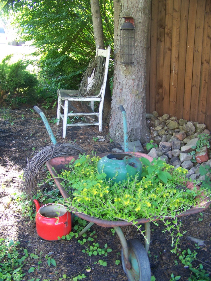 An old wheel barrow with a ground cover and old tea pots