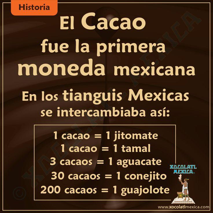 En la historia de México, el dinero crecía en los árboles... ¡Que rico!