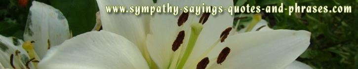 sympathy&sayings