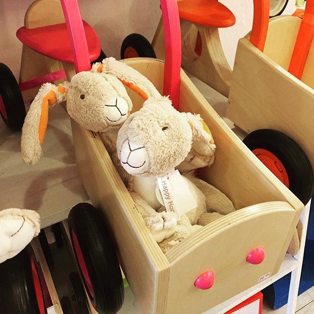 Kom ga je met ons mee? #konijn #bakfiets #hout #happyhorse #viacannella #kinderwinkel #cuijk #roze
