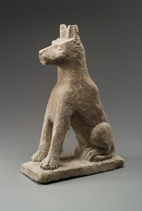 Limestone statue of seated dog. Hellenistic Period (Ptolemaic dynasty)–Roman Imperial. | Museum of Fine Arts, Boston