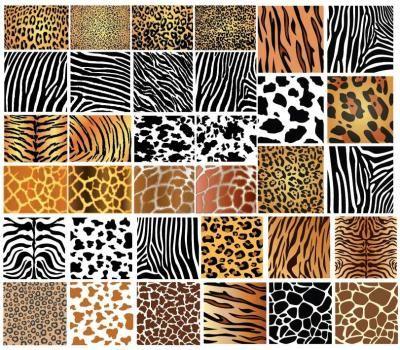 Backgrounds - Animal Skin Patterns