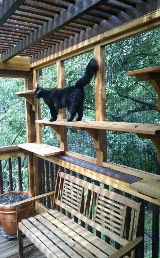 David from The Cat Carpenter took an existing outdoor patio and enclosed it in wire mesh, creating a safe space that kitties and humans alike can enjoy.