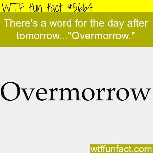 The word for after tomorrow - WTF fun fact                                                                                                                                                                                 More