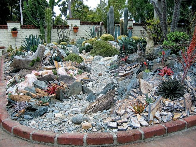 318 best Gardening Landscaping II Cacti and Succulents images