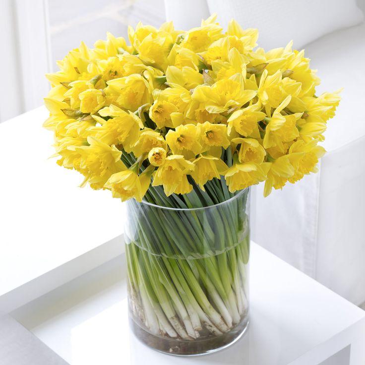 Цветок, заказ цветов с доставкой нарциссы