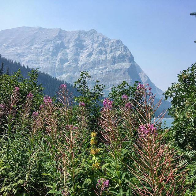 #canada #explore #explorecanada #adventureawaits #canada150 #adventure #mountains #wanderlust #instagood #love #beautiful #travel  #exploretheworld #nature #naturelovers #aworldwithyou
