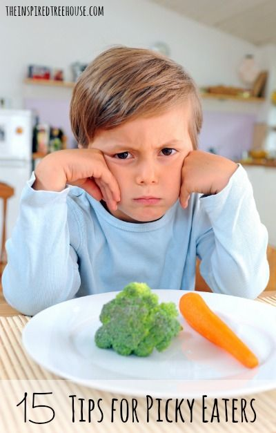 Do you have a fussy eater at home? We love these great tips for fuss-free meal times