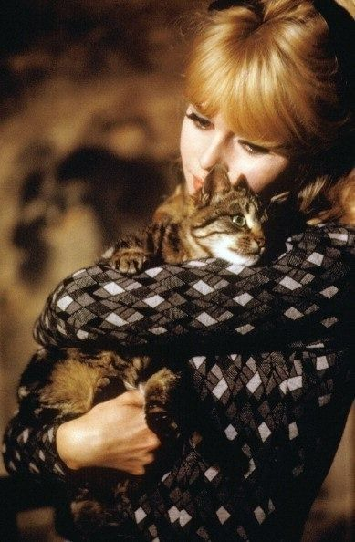 17 Best Images About Brigitte Bardot On Pinterest Bert